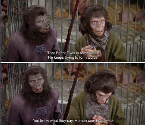 planet of the apes quotes the gallery for gt kannada kavanagalu friendship