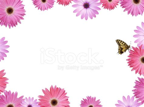 Yellow Bed Frame Beautiful Pink Flower Frame With Butterfly Stock Photos