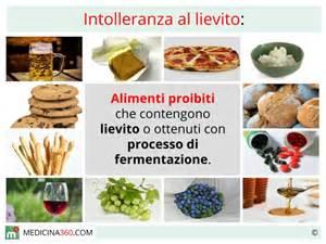 alimenti con il glutine intolleranza al lievito sintomi cosa mangiare cibi