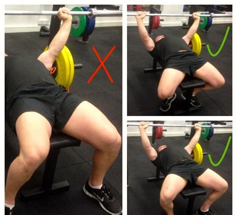 Is Bench Press Important 28 Images Is Bench Press Important 28 Images How To Build