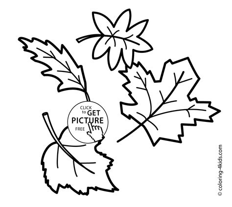 childrens coloring pages fall leaves autumn coloring pages leaves for kids seasons coloring
