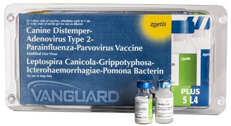 parvo vaccine for dogs vanguard plus 5 l4 zoetis us