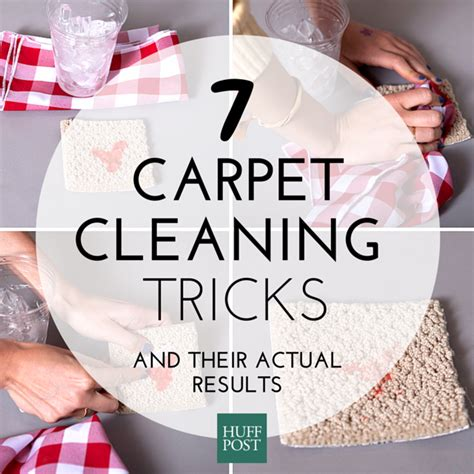 Which Carpet Cleaner Works The Best Science Project - we tried 7 diy carpet cleaning tricks here s what worked