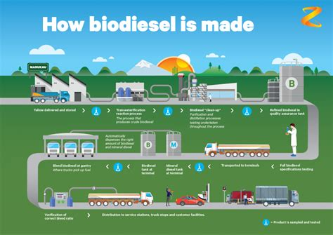 How Is A Made by World Class Biodiesel Made In New Zealand Z