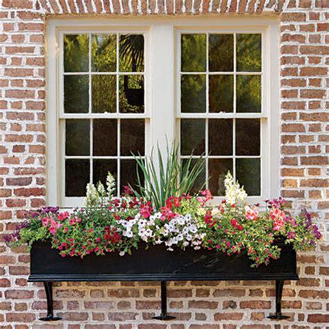 windows boxes cottage flavor window boxes abloom