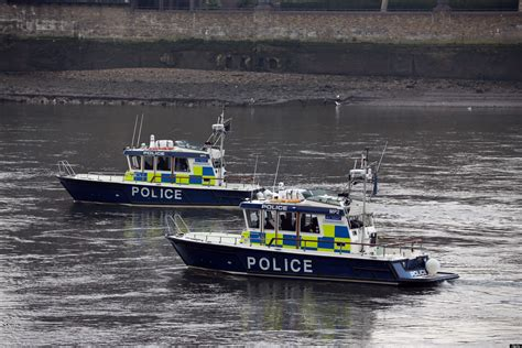 thames river boats dogs woman and child rescued after falling into river thames