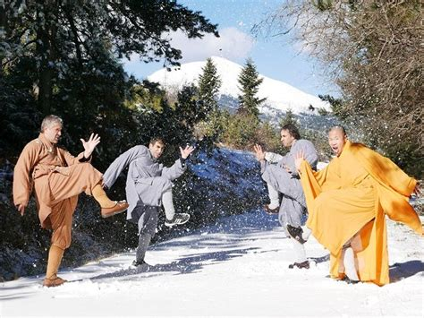 best shaolin 18 best shaolin kung fu in shaolin temple images on