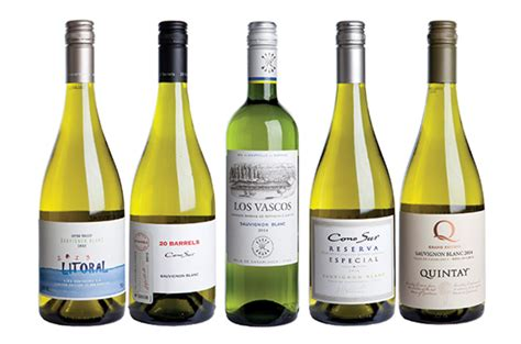 the best sauvignon blanc chile five great value sauvignon blanc wines decanter