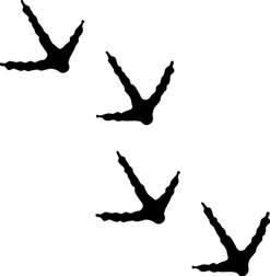 antlers tattoo turkey tracks silhouette google search boys room pinterest