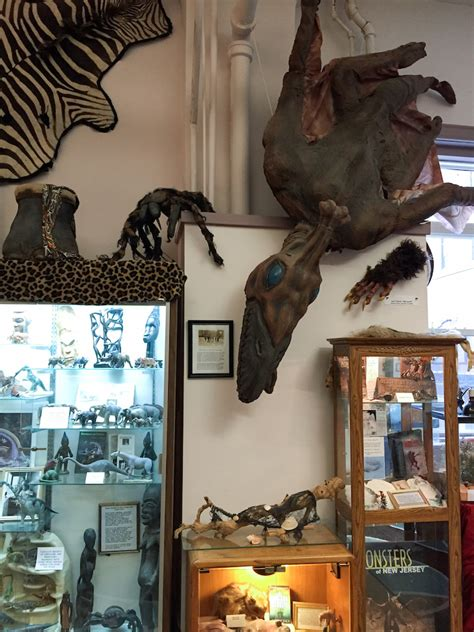international cryptozoology museum  fascinating