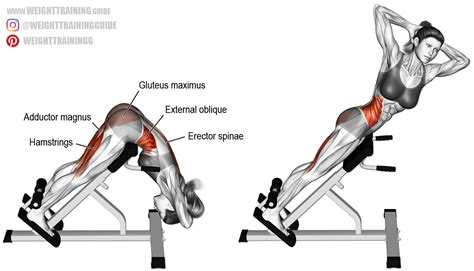 hyperextension bench workouts twisting hyperextension exercise guide and video weight