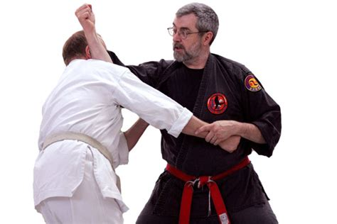ryukyu kempo history practice books self defense