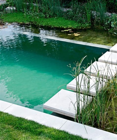 natural pool a swimming hole in your backyard dujour