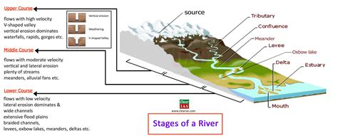 diagram of river river system diagram pictures to pin on pinsdaddy