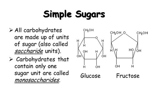 basic biochemistry carbohydrate protein and fat