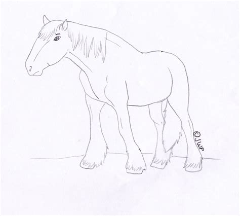 clydesdale horse head coloring pages coloring pages