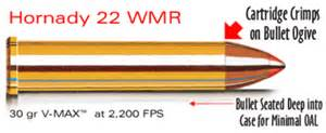 New 2200 fps 22 mag rimfire from hornady 171 daily bulletin