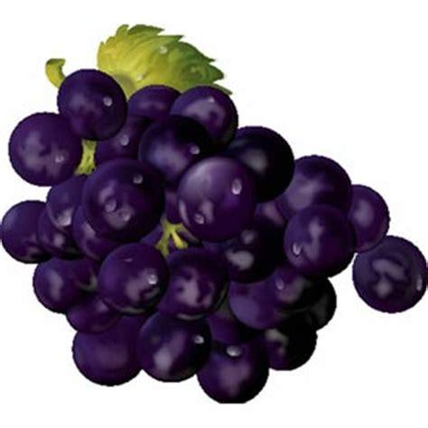 imagenes graciosas uvas adivinanzas de frutas juegos infantiles