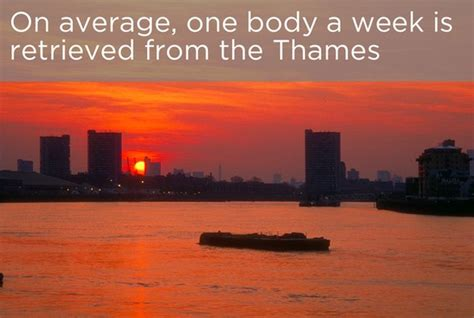 thames river facts interesting facts about the river thames 22 pics