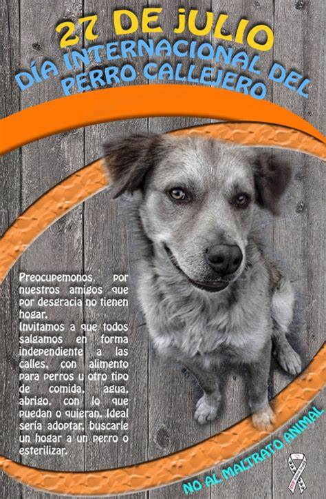 dias de perros el 8420782661 hermosas im 225 genes para descargar de perros en el d 237 a internacional del perro callejero
