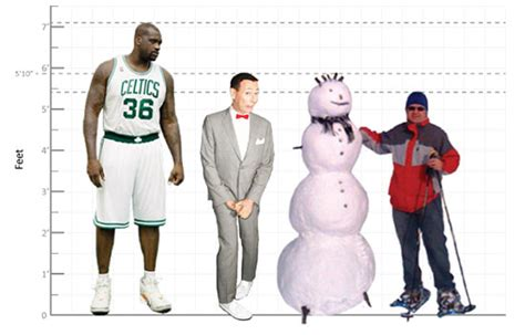 average height average american height models picture