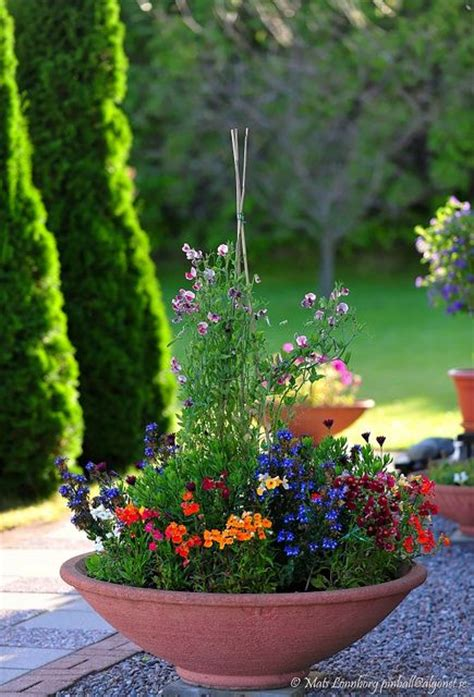 container gardening plant combinations great color combination of flowers container gardening