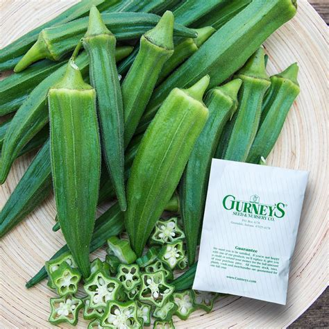 gurneys okra gurneys gumbo hybrid  seed packet