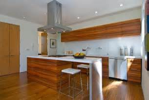 Modern Wooden Kitchen Designs San Francisco Home Pictures Featuring Modern Design