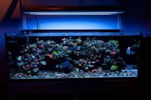 led aquarium strip lights 9w aquarium led light diy led aquarium strip light