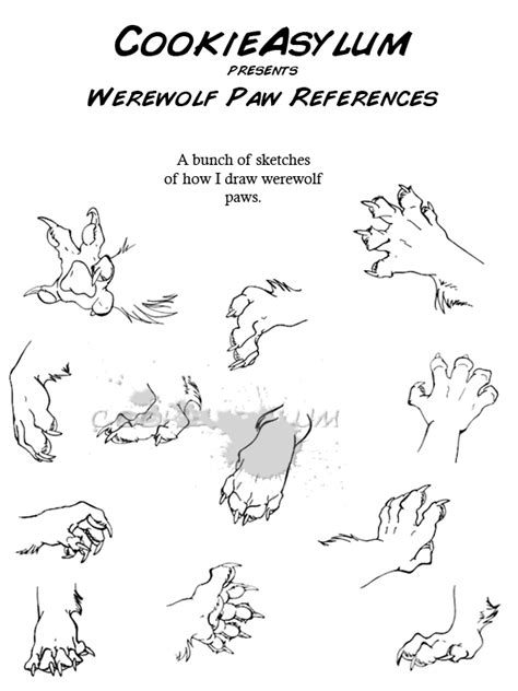 Werewolf Paw Tutorial | werewolf paw ref by cookieasylum on deviantart