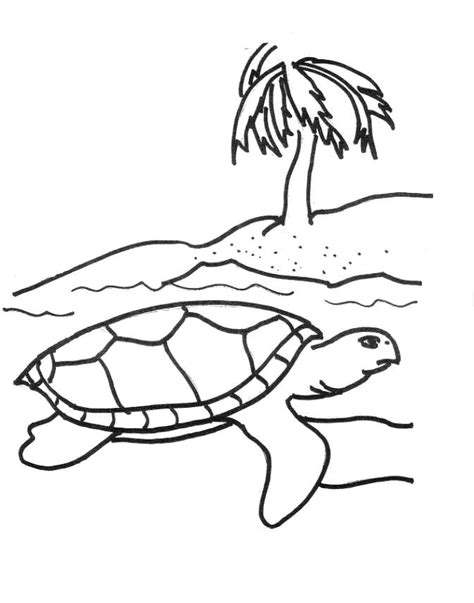 Coloring Page Sea Turtle by Free Printable Sea Turtle Coloring Pages For