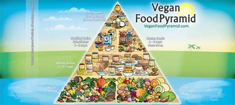 alimentazione vegana ricette alimentazione vegana