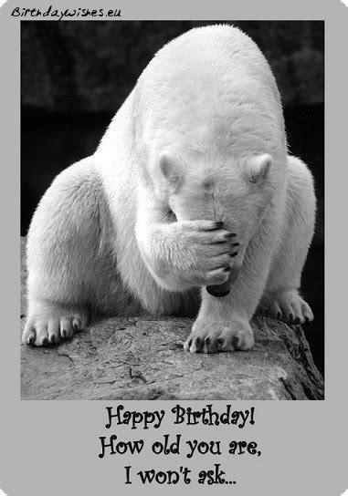 Top  Funny  Ee  Birthday Ee   Wishes For Friend And Humorous