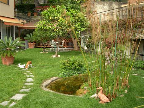 laghetti da giardino per tartarughe benza laghetti da giardino cascate e ruscelli artificiali
