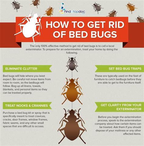 rid  bedbugs fast