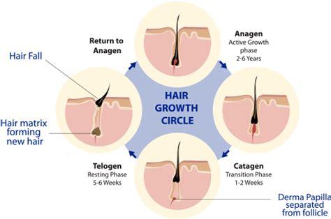 hair loss latest news hair in loss reason woman what causes hair loss
