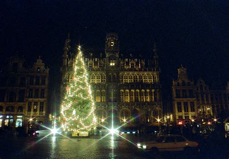 fun christmas tree places in se wisconsin brussels tree
