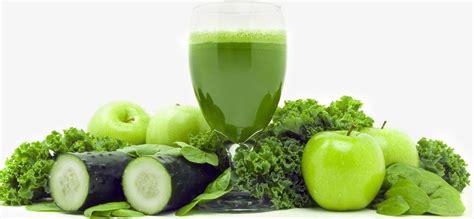 imagenes batidos verdes zumos y batidos detox para adelgazar r 225 pidamente
