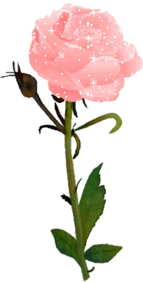 imagenes de flores otoñales rosas gif
