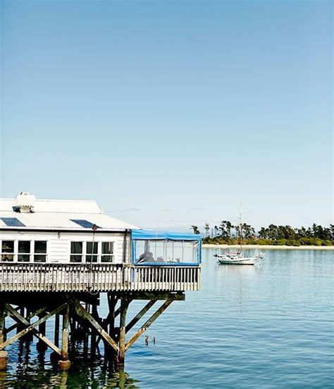 the boat shed new zealand best 25 nelson new zealand ideas on pinterest nz