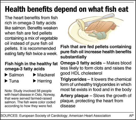 Health Benefits Of Fish by Health Benefits Of Fish Of Pakistan