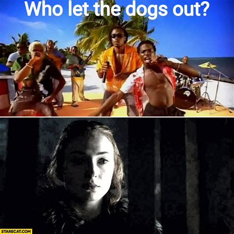 who let the dogs out meme who let the dogs out of thrones meme starecat