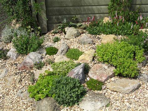 plants for backyard alison s gardens seaside garden