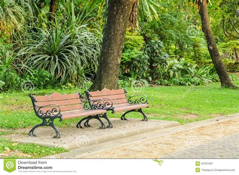 bench in the park benches in the park stock image image of garden bench