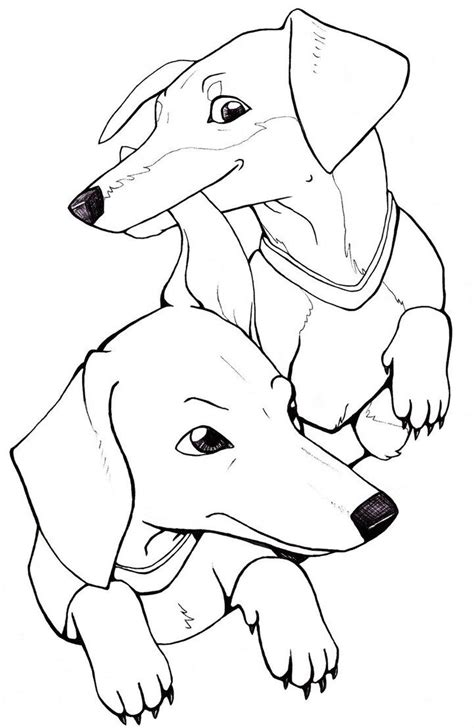 wiener dog coloring page 87 coloring pages of wiener dogs longhaired