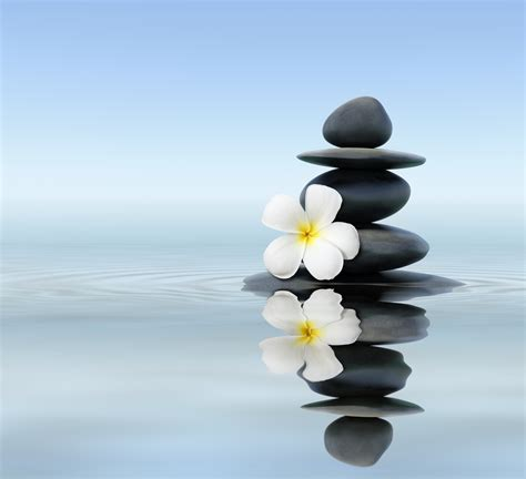 imagenes de zen health naturally magazine issue 21 more great natural