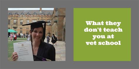 libro what they dont teach what they don t teach you at vet dr belinda the vet