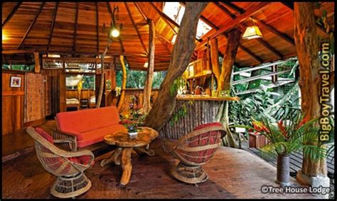 coolest treehouse in the world a view from the loft area in skyes treehouse in volcano