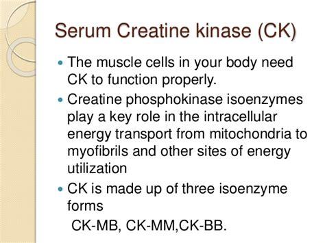 creatine kinase function cardiac function test