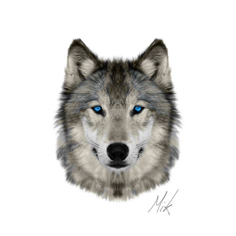 of a wolf wolf face2 creative future